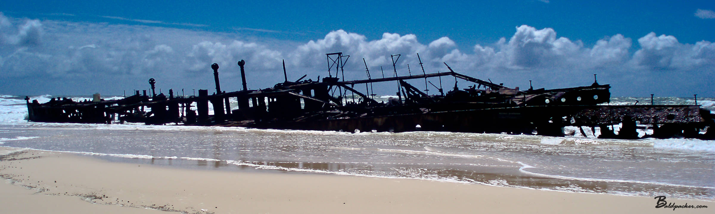 Australia: Fraser Island Cool Dingo Tour