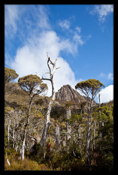 Dove Lake • Cradle Mountain National Park • Tasmania
