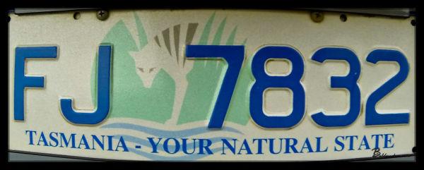 Thylacine on Tasmania License Plate