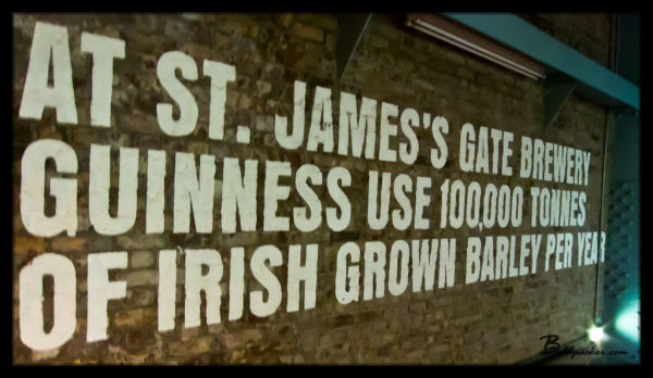 Guinness - Made in Ireland