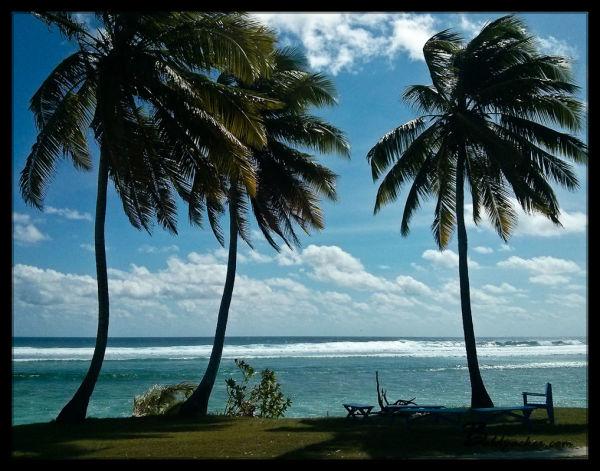Views Behind Cocos Beach Motel