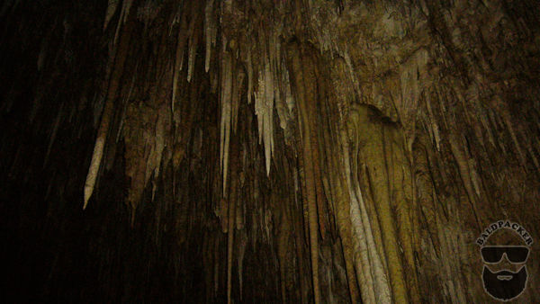 Stalactites in Carlsbad Cavern