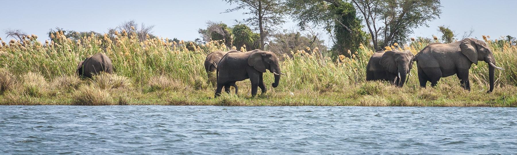 Zambezi Canoe Header Min