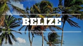 Belize Link