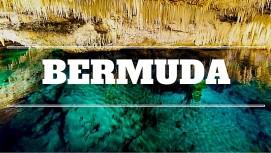 Bermuda Link