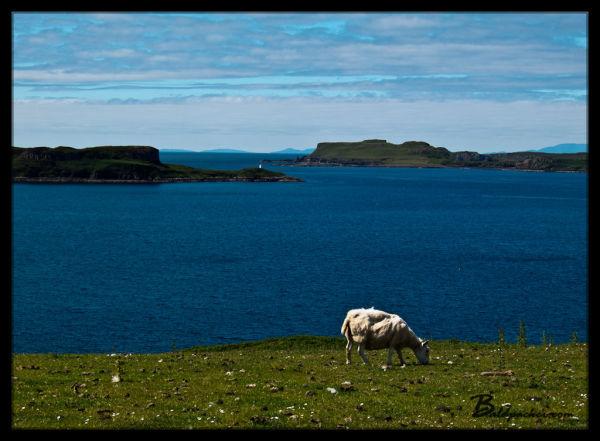 Isle of Skye Views
