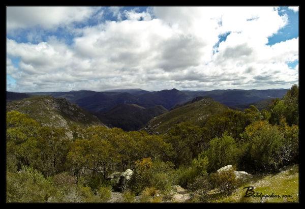 Views of Western Tasmania