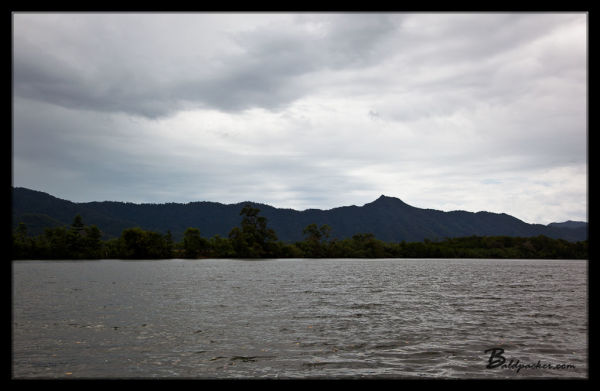 Daintree River and Daintree Rainforest
