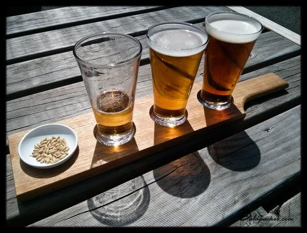 Boag's Brewery Beer Paddle