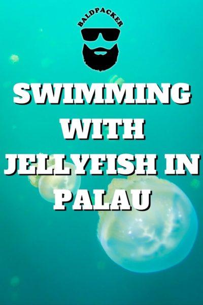 Palau Jellyfish