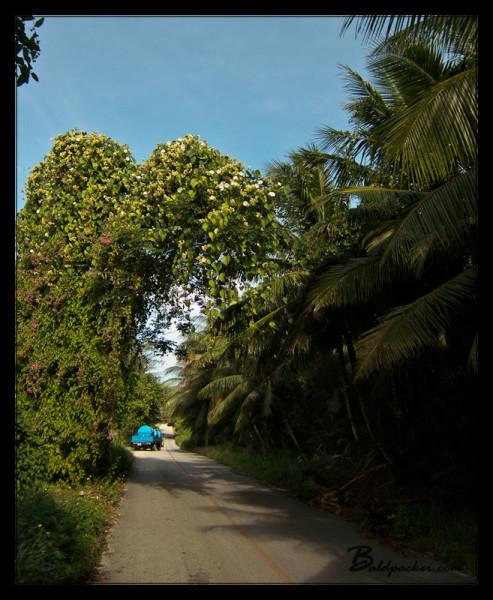 Side Road on Saipan