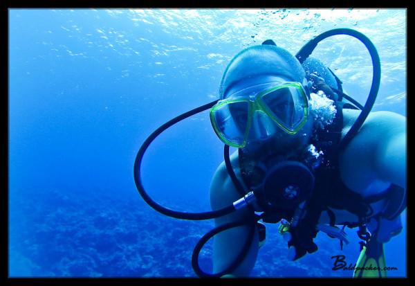 Vertigo Scuba Dive, Yap